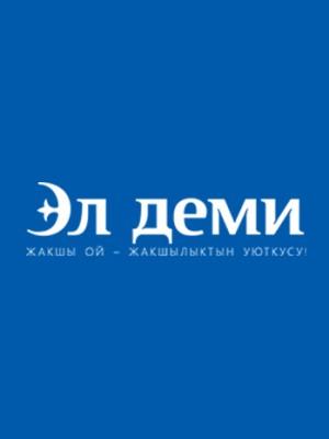 logo-eldemi-kg